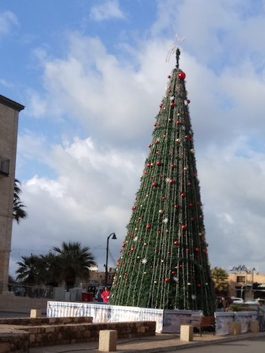 blog golly&bossy - christmas tree - jaffa